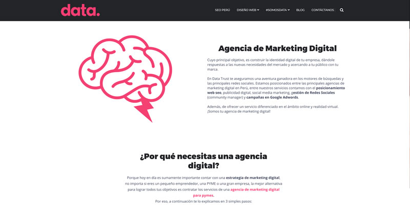 Data Trust Agencia de marketing digital