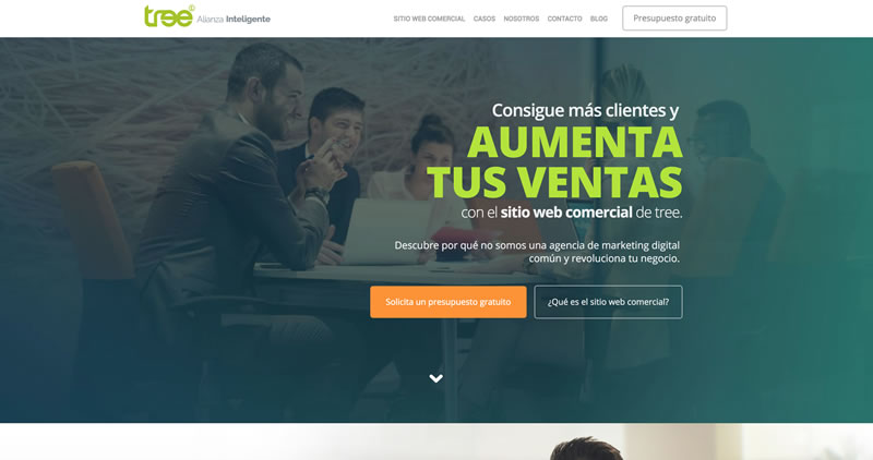 Tree Agencia de marketing digital